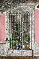 la casa de la jardinera - 6.5x10 intaglio print (non-toxic) 2010