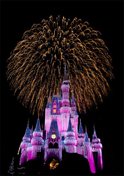 the magic kingdom florida. the magic kingdom florida.
