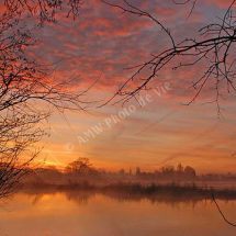 Early Sky