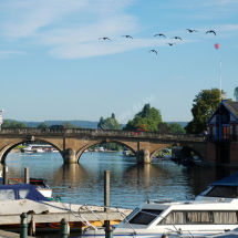 Henley Morning