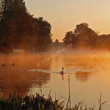 Morning Spring Rise