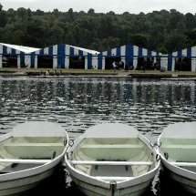 Ready for Regatta