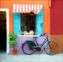 Burano, shop and bicycle