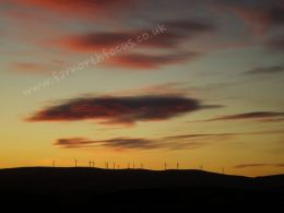 Turbines at Dawn