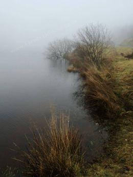 Lochside Mist