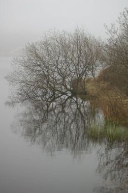 Lochside and Mist