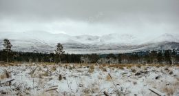 Cairngorm Winter View