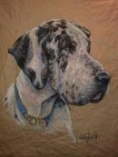 Rodney the Great Dane.