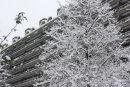 Barbican Snow