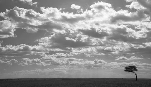 Clouds, Masai Mara, Kenya