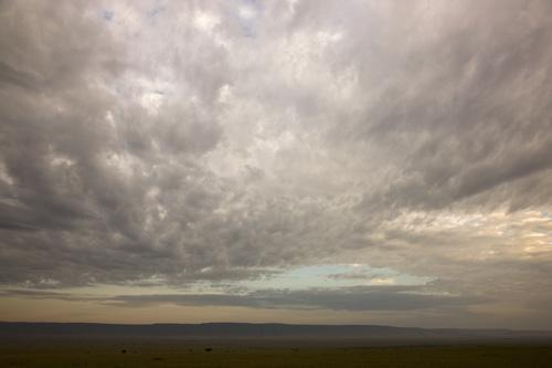 Morning light over Mara, Kenya