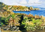 Jasper, on the cliffs, Guernsey.