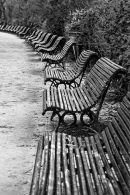 Curvy Benches
