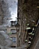 Paris puddle reflection 2
