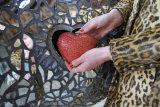Heart of Rhino 2012