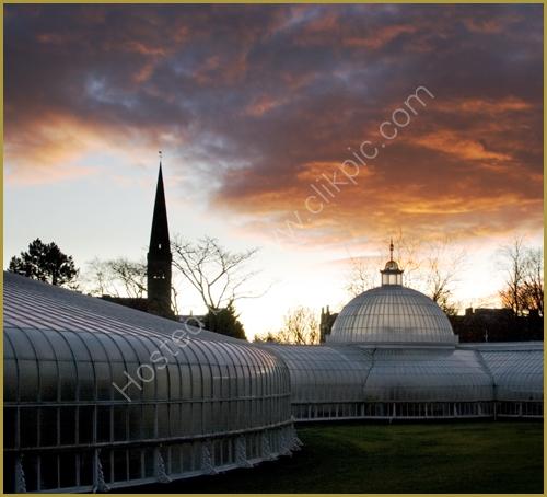 The Kibble Palace, Botanic Gardens