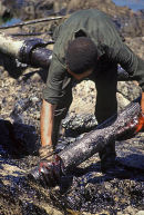 Clearing oil spill