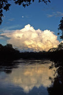 Moonrise on the Tambopata River