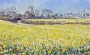 Cornish Daffodils.