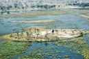 Botswana - Okavango Delta (3)
