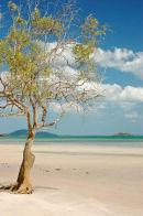 Frangipani Bay, Cape York, Qld