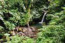 Monetverde Cloud Forest (1)
