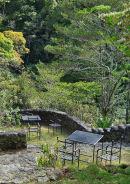Monetverde Cloud Forest (2)
