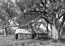 Wilpena Homestead, SA
