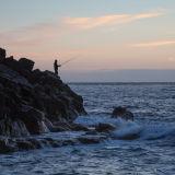 Evening fisherman
