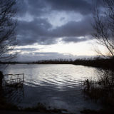 Flooded field at twilight