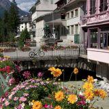 Flowers and bridge, Chamonix