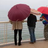 Three umbrellas, Tuscany