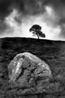 Between a Rock and a Hard Place - Scolty Hill