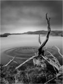 Breaking The Surface Tension - Loch Crocach