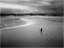 Downpour - Dunnet Beach
