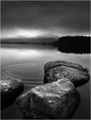 Ripples - Loch Garten