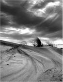 Shifting Sands - Newburgh