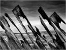 Snow Fence - Kinbrace