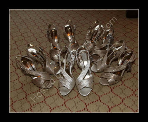 Bride & Bridesmaids Shoes
