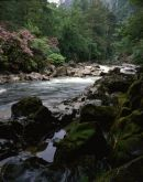 Gwynedd: Aberglaslyn