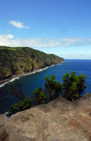 Sáo Miguel - Nordeste - Ponta do Arnel