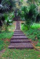 Dominica - Roseau - Botanical Gardens
